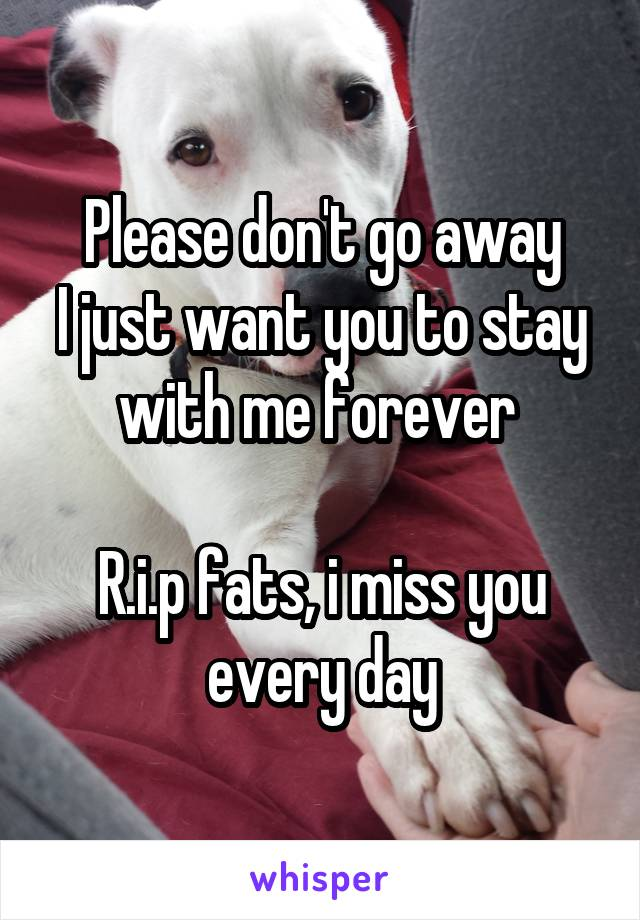 Please don't go away I just want you to stay with me forever   R.i.p fats, i miss you every day