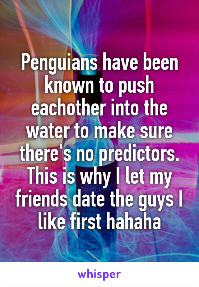 Penguians have been known to push eachother into the water to make sure there's no predictors. This is why I let my friends date the guys I like first hahaha