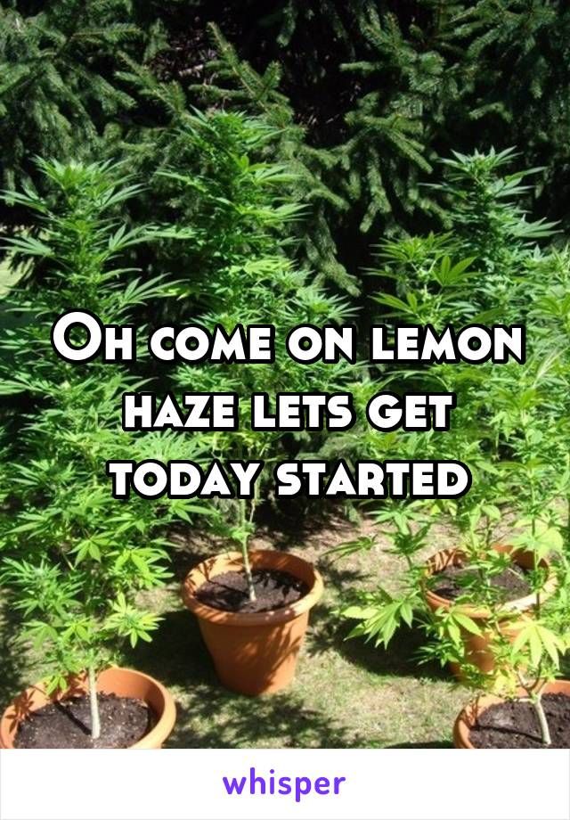 Oh come on lemon haze lets get today started