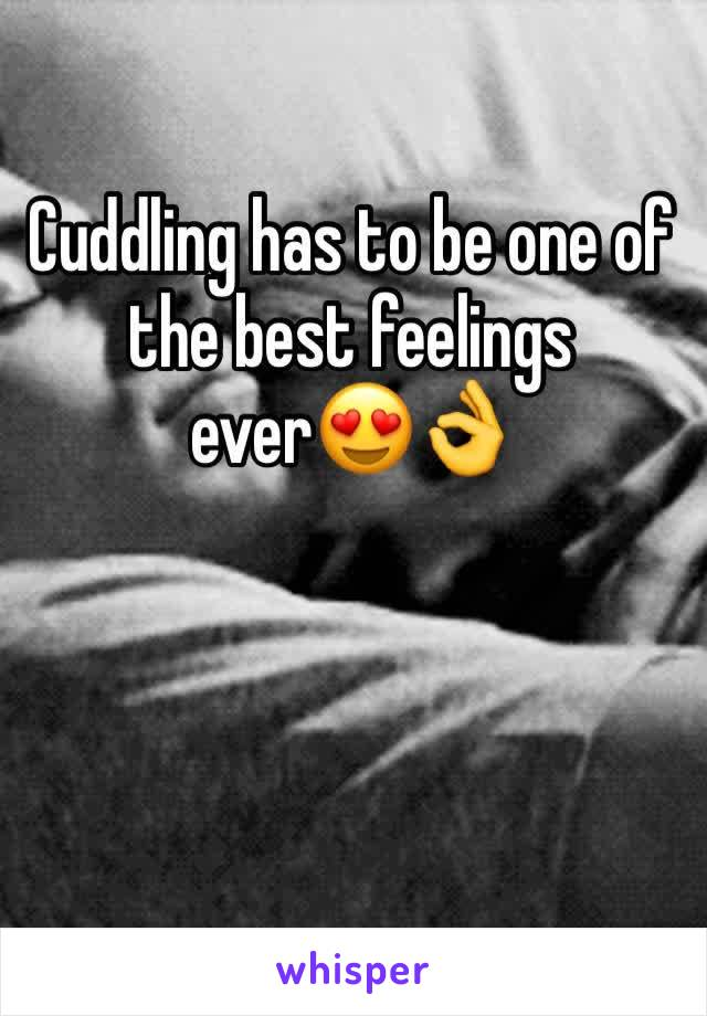 Cuddling has to be one of the best feelings ever😍👌