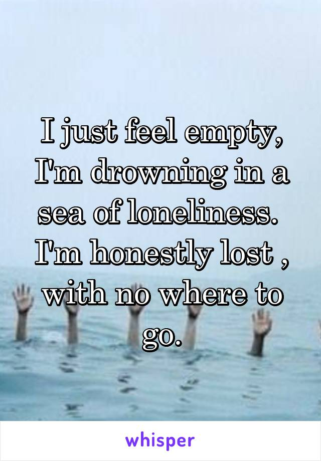 I just feel empty, I'm drowning in a sea of loneliness.  I'm honestly lost , with no where to go.