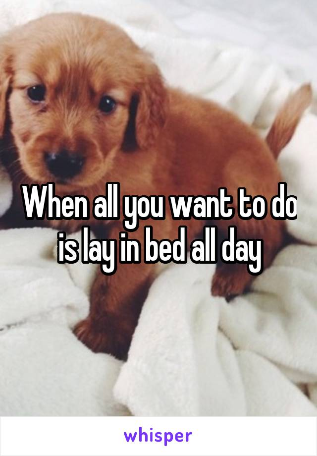 When all you want to do is lay in bed all day