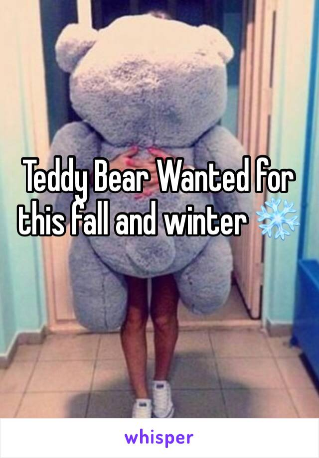 Teddy Bear Wanted for this fall and winter ❄️