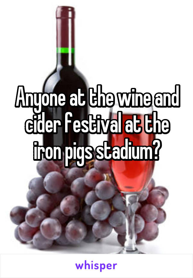 Anyone at the wine and cider festival at the iron pigs stadium?