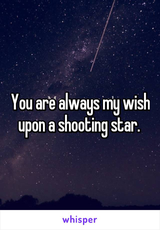 You are always my wish upon a shooting star.