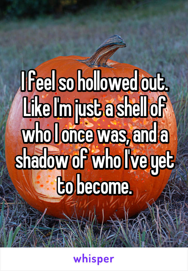 I feel so hollowed out. Like I'm just a shell of who I once was, and a shadow of who I've yet to become.