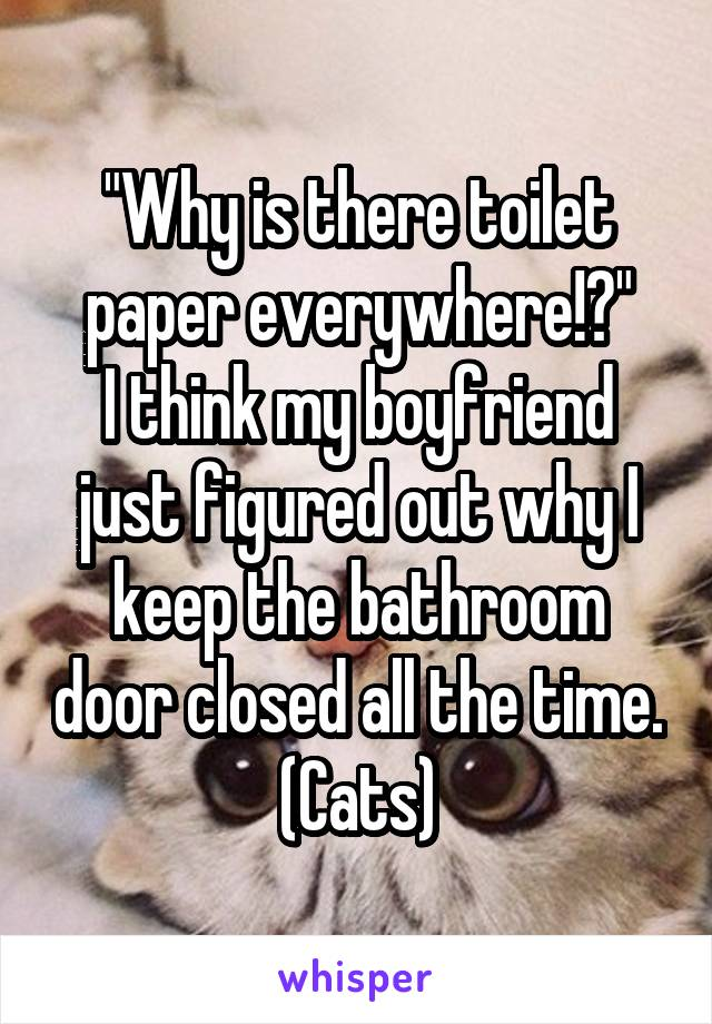 """Why is there toilet paper everywhere!?"" I think my boyfriend just figured out why I keep the bathroom door closed all the time. (Cats)"