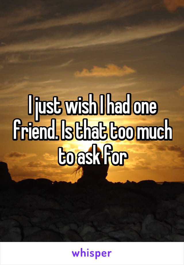 I just wish I had one friend. Is that too much to ask for