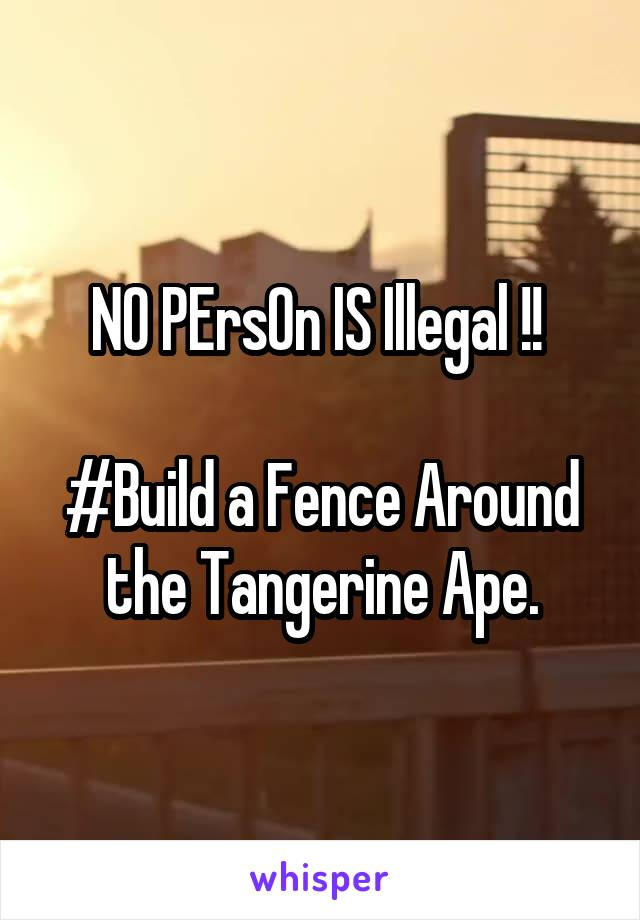 NO PErsOn IS Illegal !!   #Build a Fence Around the Tangerine Ape.