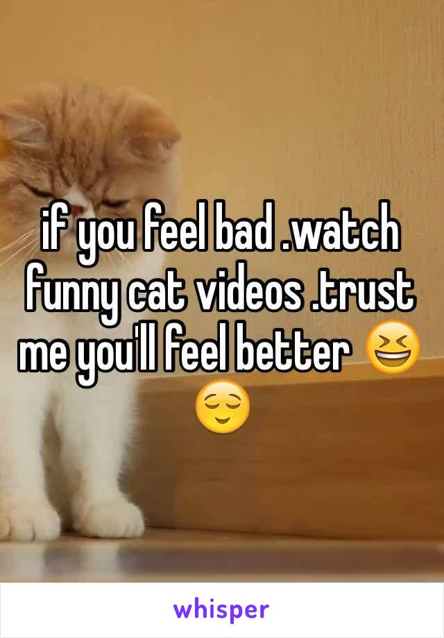 if you feel bad .watch funny cat videos .trust me you'll feel better 😆😌