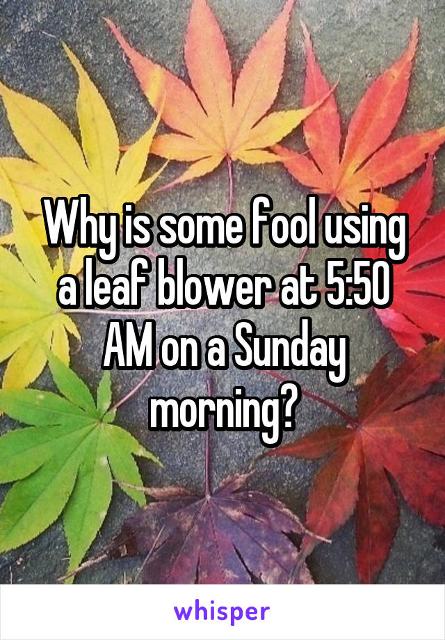 Why is some fool using a leaf blower at 5:50 AM on a Sunday morning?