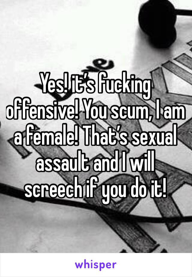 Yes! it's fucking offensive! You scum, I am a female! That's sexual assault and I will screech if you do it!