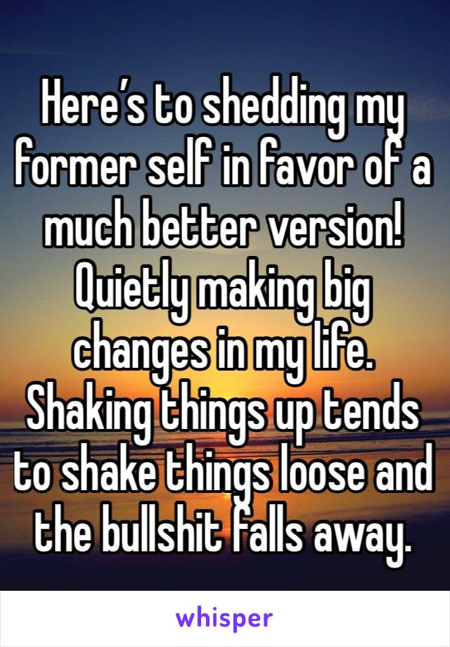 Here's to shedding my former self in favor of a much better version! Quietly making big changes in my life. Shaking things up tends to shake things loose and the bullshit falls away.
