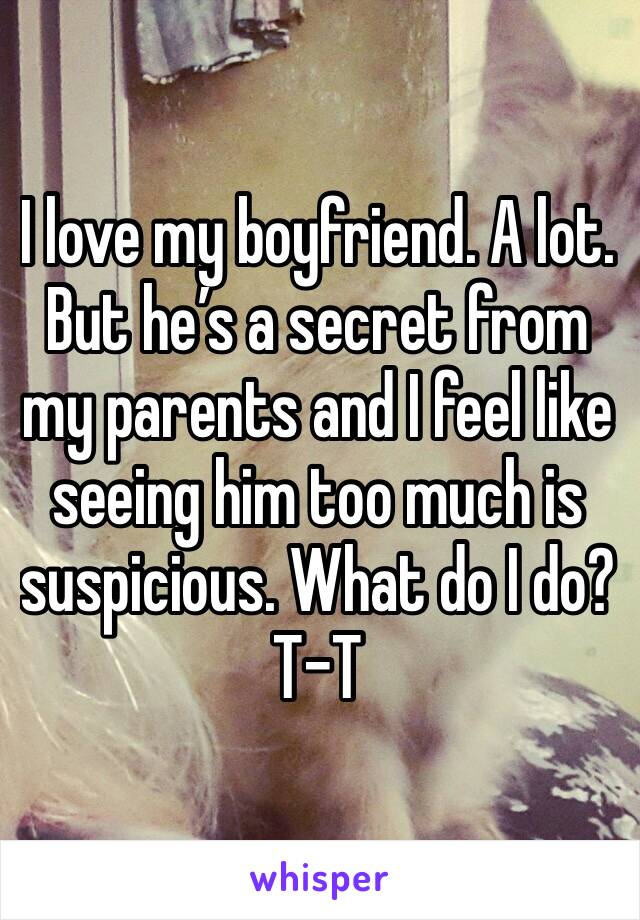 I love my boyfriend. A lot. But he's a secret from my parents and I feel like seeing him too much is suspicious. What do I do?T-T