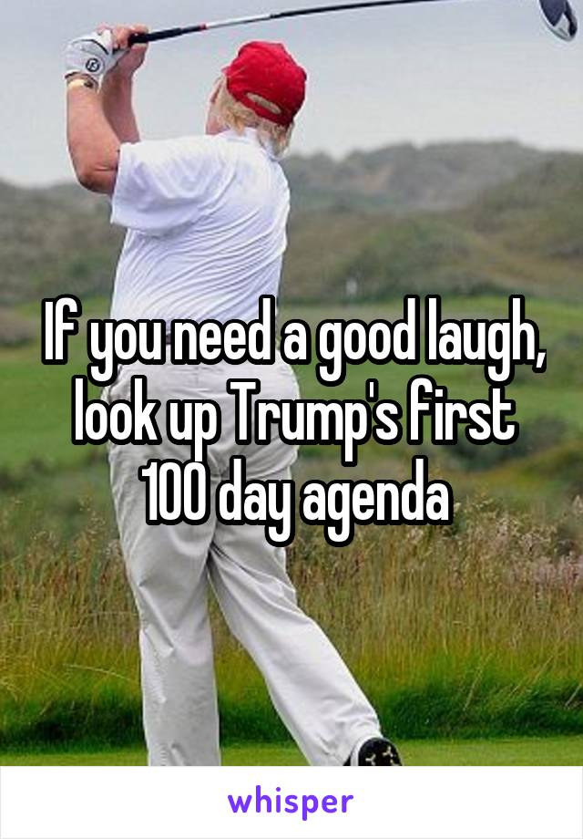 If you need a good laugh, look up Trump's first 100 day agenda