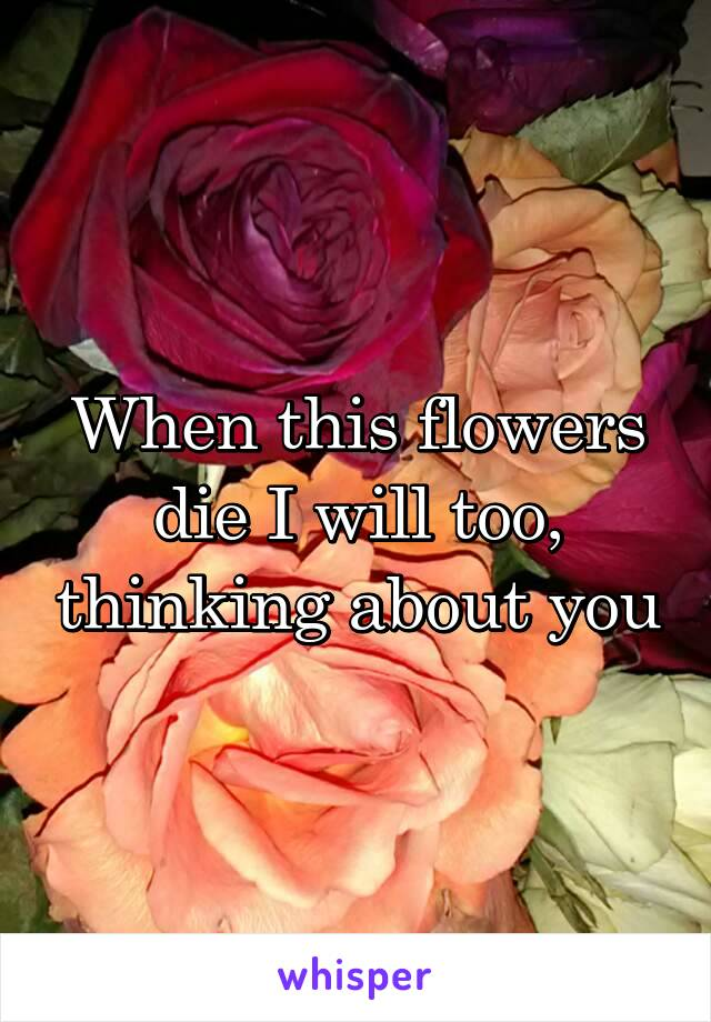 When this flowers die I will too, thinking about you
