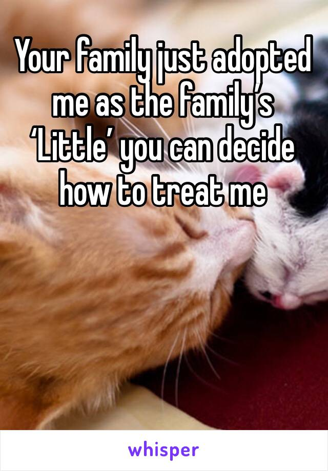 Your family just adopted me as the family's 'Little' you can decide how to treat me