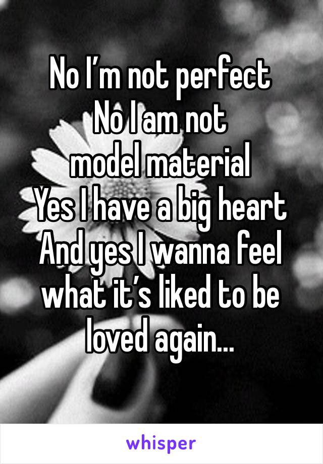 No I'm not perfect No I am not model material Yes I have a big heart And yes I wanna feel what it's liked to be loved again...