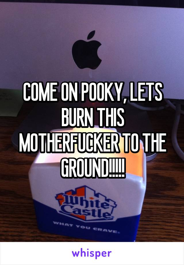 COME ON POOKY, LETS BURN THIS MOTHERFUCKER TO THE GROUND!!!!!