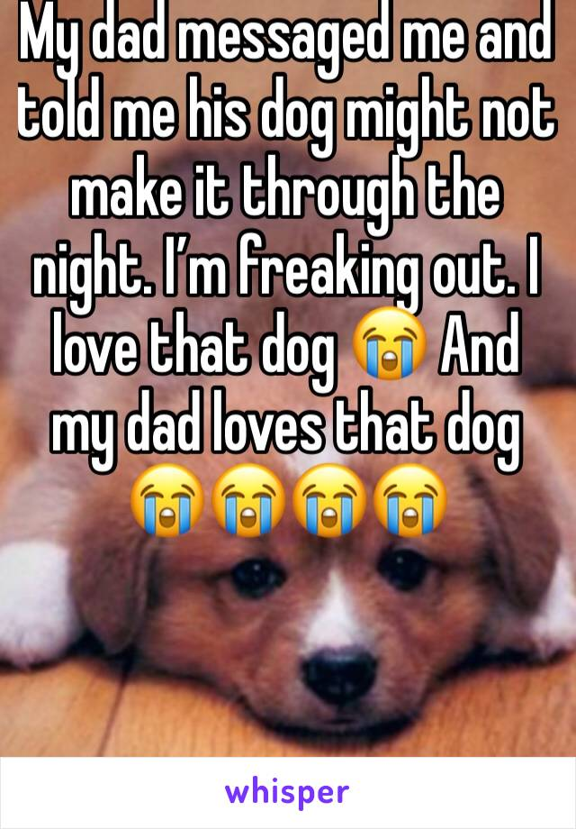 My dad messaged me and told me his dog might not make it through the night. I'm freaking out. I love that dog 😭 And my dad loves that dog 😭😭😭😭