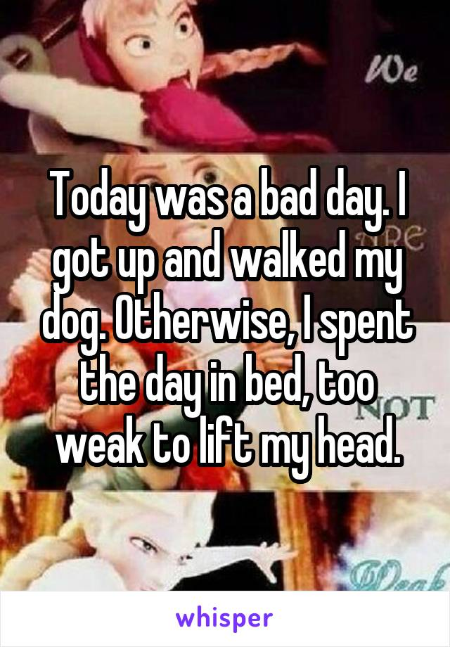 Today was a bad day. I got up and walked my dog. Otherwise, I spent the day in bed, too weak to lift my head.