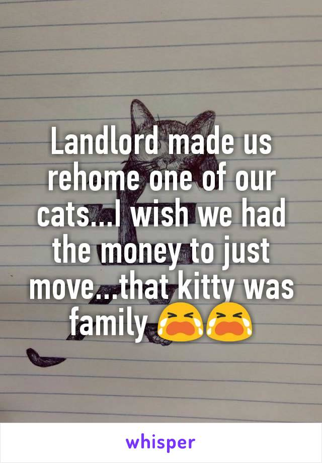 Landlord made us rehome one of our cats...I wish we had the money to just move...that kitty was family 😭😭