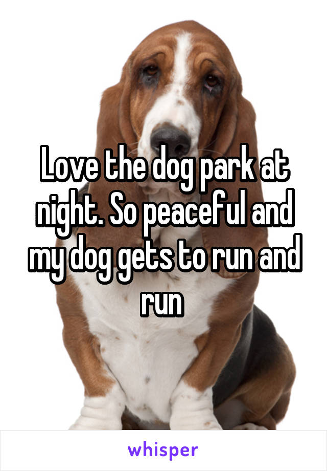 Love the dog park at night. So peaceful and my dog gets to run and run