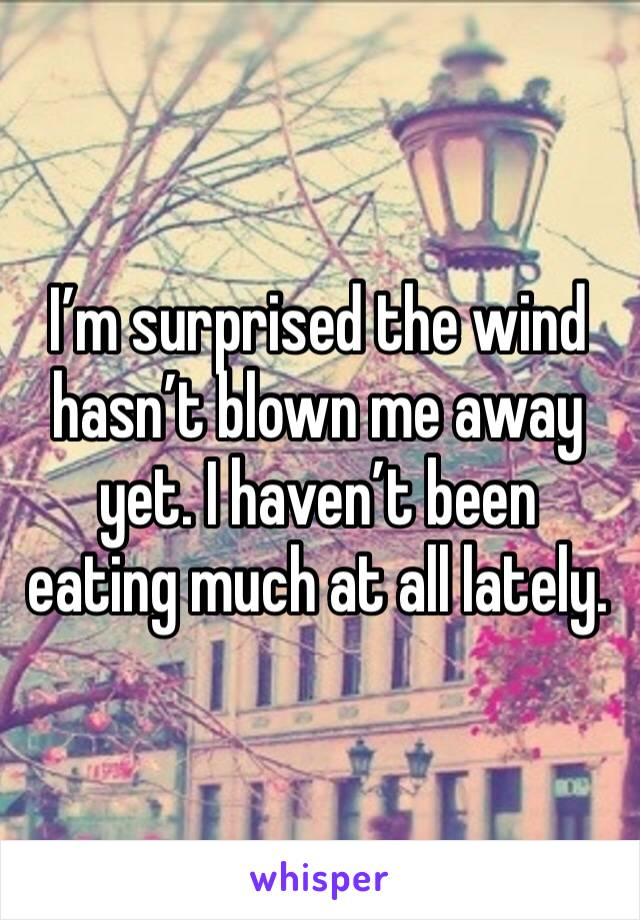 I'm surprised the wind hasn't blown me away yet. I haven't been eating much at all lately.