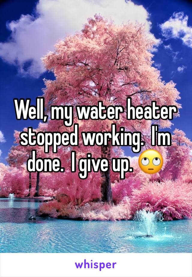 Well, my water heater stopped working.  I'm done.  I give up. 🙄