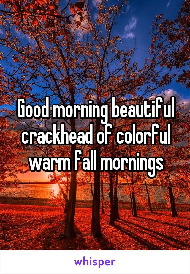 Good morning beautiful crackhead of colorful warm fall mornings