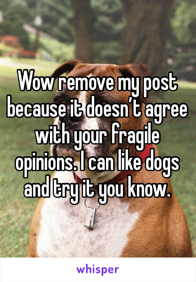 Wow remove my post because it doesn't agree with your fragile opinions. I can like dogs and try it you know.