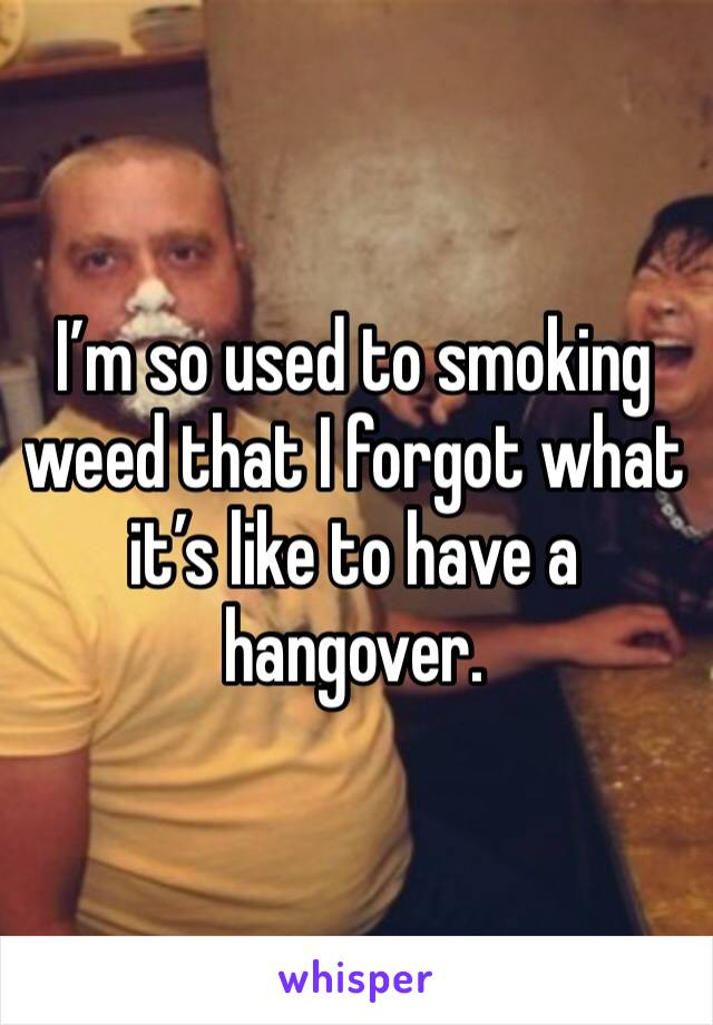 I'm so used to smoking weed that I forgot what it's like to have a hangover.