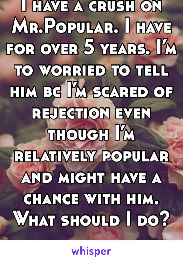 I have a crush on Mr.Popular. I have for over 5 years. I'm to worried to tell him bc I'm scared of rejection even though I'm relatively popular and might have a chance with him. What should I do?