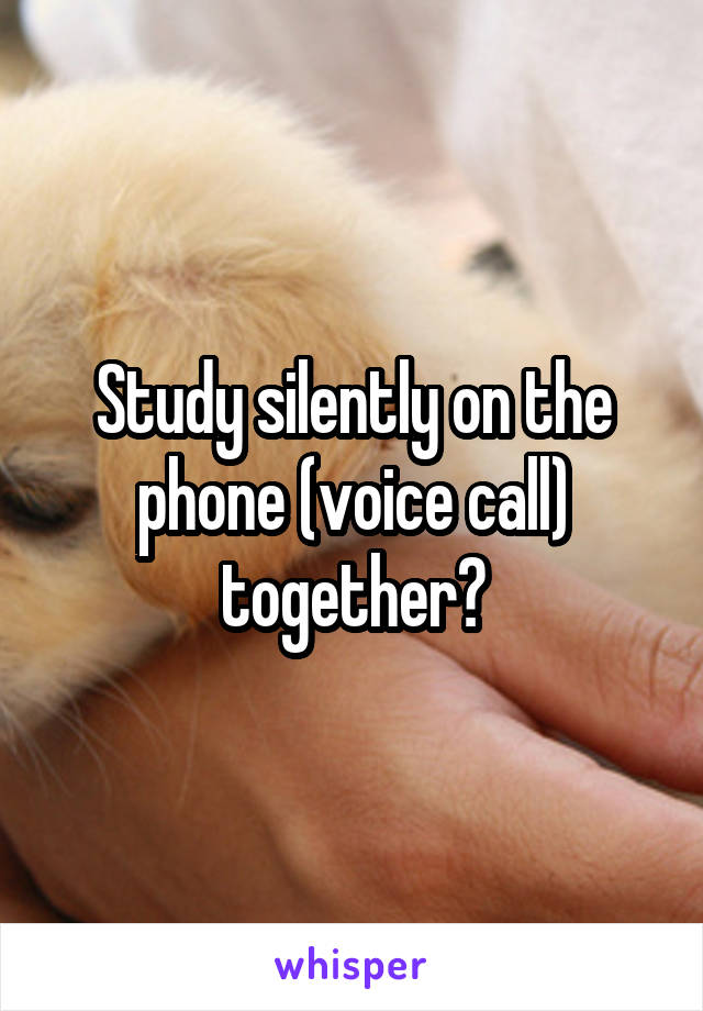 Study silently on the phone (voice call) together?