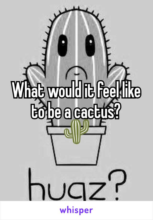 What would it feel like to be a cactus? 🌵