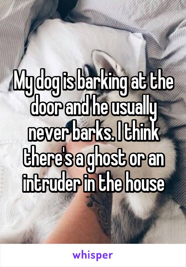 My dog is barking at the door and he usually never barks. I think there's a ghost or an intruder in the house