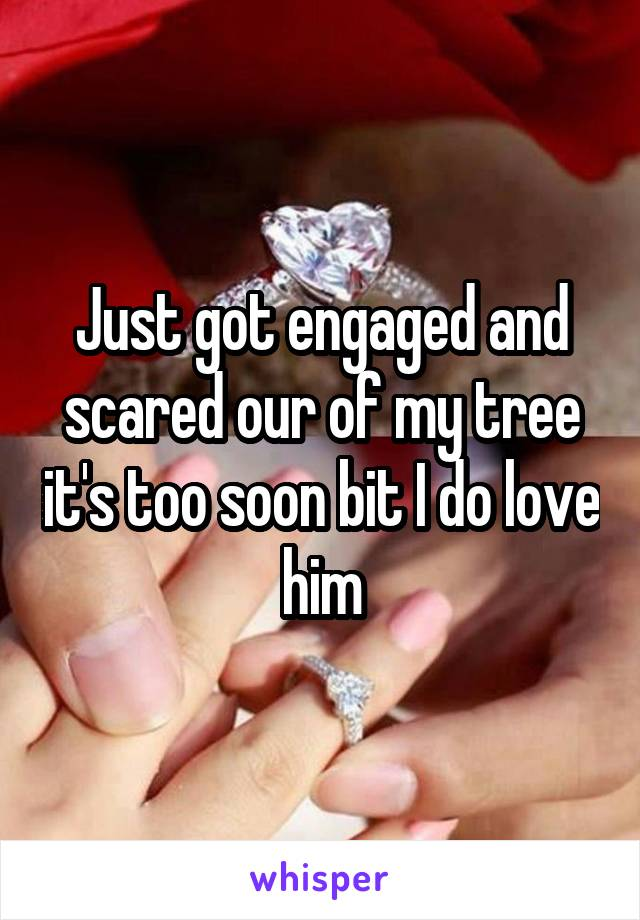 Just got engaged and scared our of my tree it's too soon bit I do love him