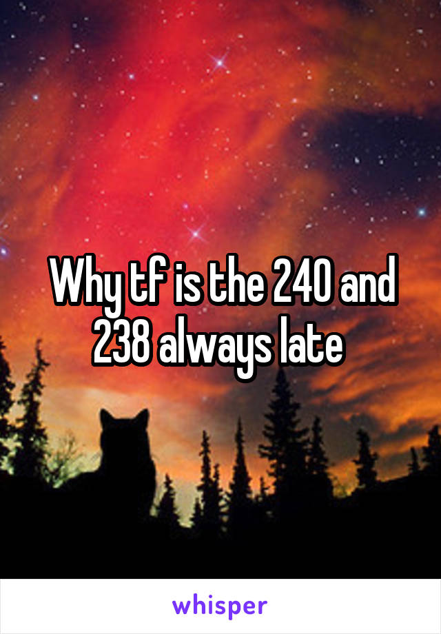 Why tf is the 240 and 238 always late