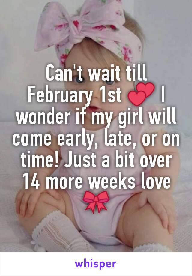 Can't wait till February 1st 💕 I wonder if my girl will come early, late, or on time! Just a bit over 14 more weeks love 🎀