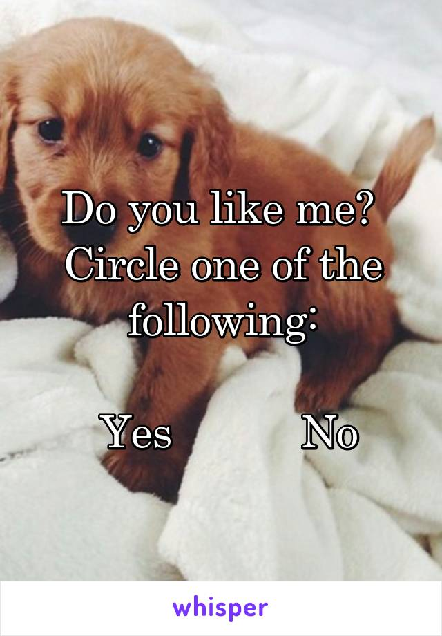 Do you like me?  Circle one of the following:   Yes           No