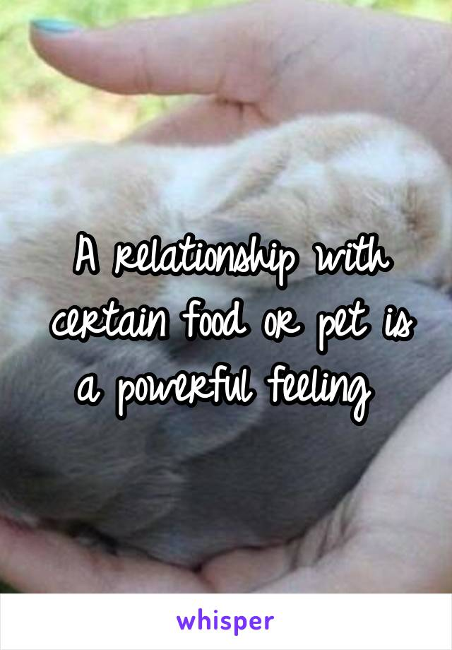 A relationship with certain food or pet is a powerful feeling