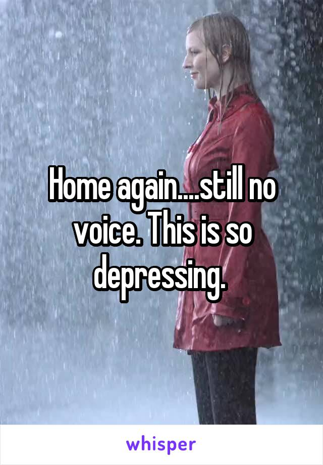 Home again....still no voice. This is so depressing.