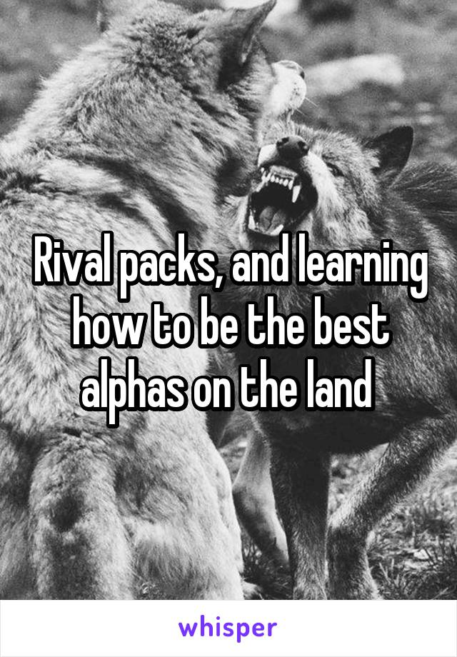 Rival packs, and learning how to be the best alphas on the land