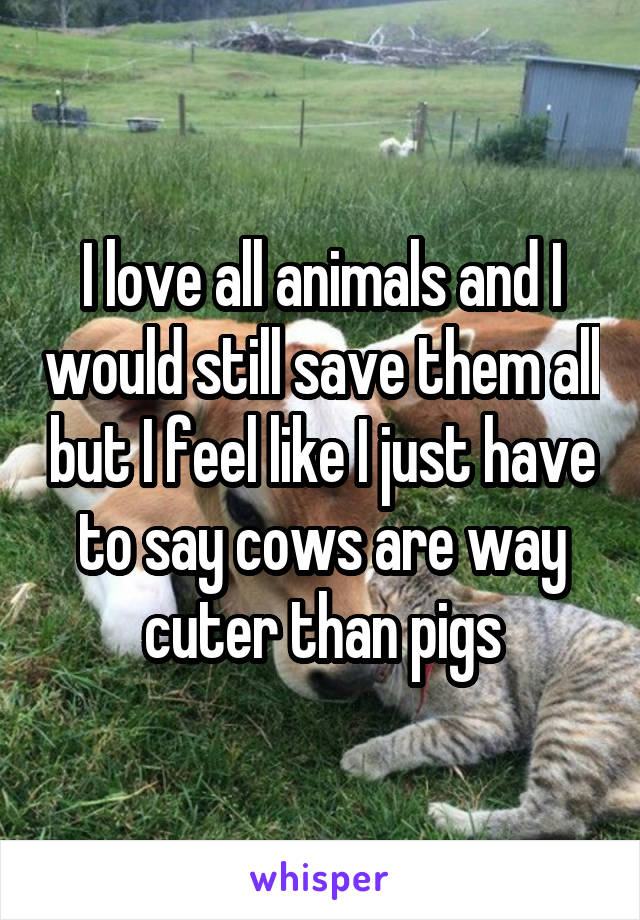 I love all animals and I would still save them all but I feel like I just have to say cows are way cuter than pigs