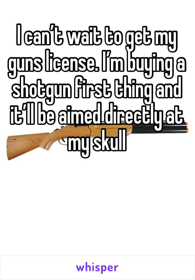 I can't wait to get my guns license. I'm buying a shotgun first thing and it'll be aimed directly at my skull