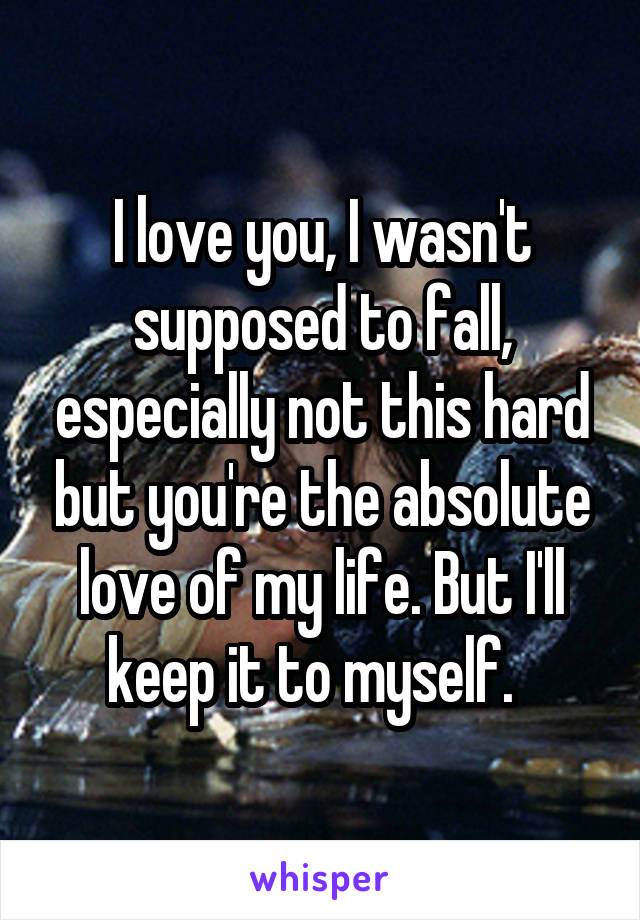 I love you, I wasn't supposed to fall, especially not this hard but you're the absolute love of my life. But I'll keep it to myself.
