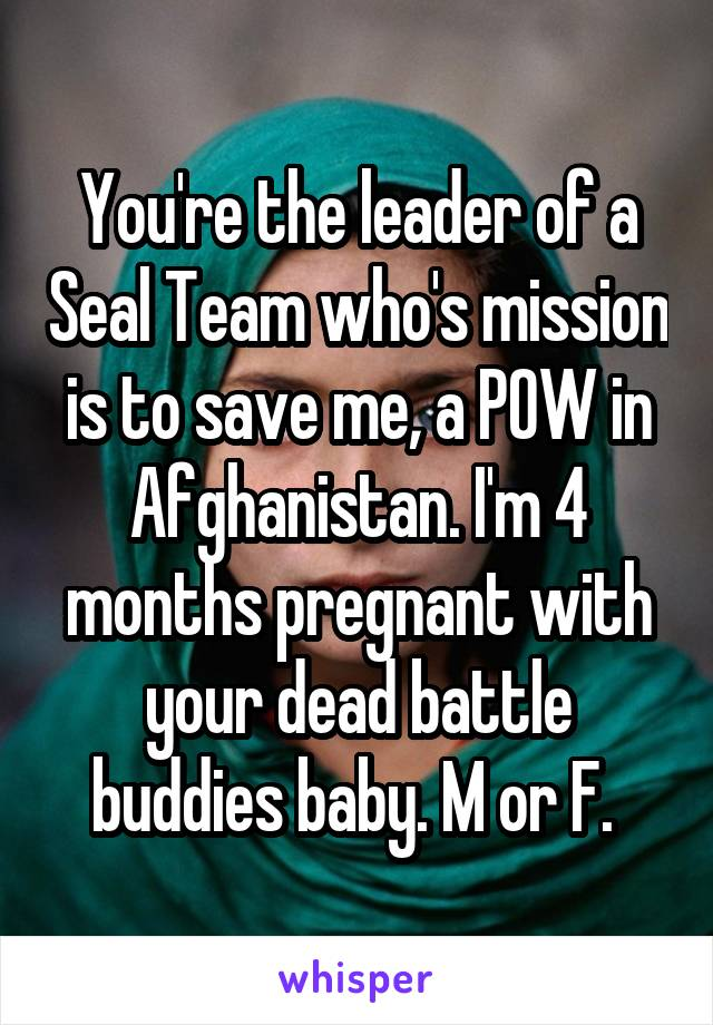 You're the leader of a Seal Team who's mission is to save me, a POW in Afghanistan. I'm 4 months pregnant with your dead battle buddies baby. M or F.