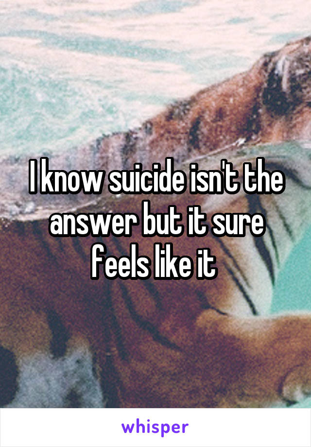 I know suicide isn't the answer but it sure feels like it