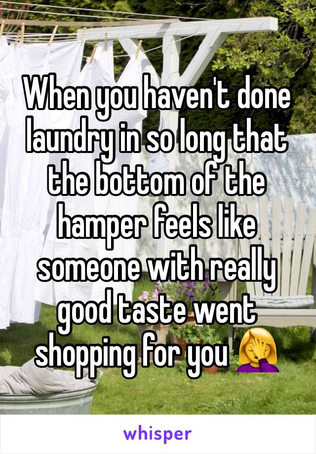 When you haven't done laundry in so long that the bottom of the hamper feels like someone with really good taste went shopping for you 🤦♀️
