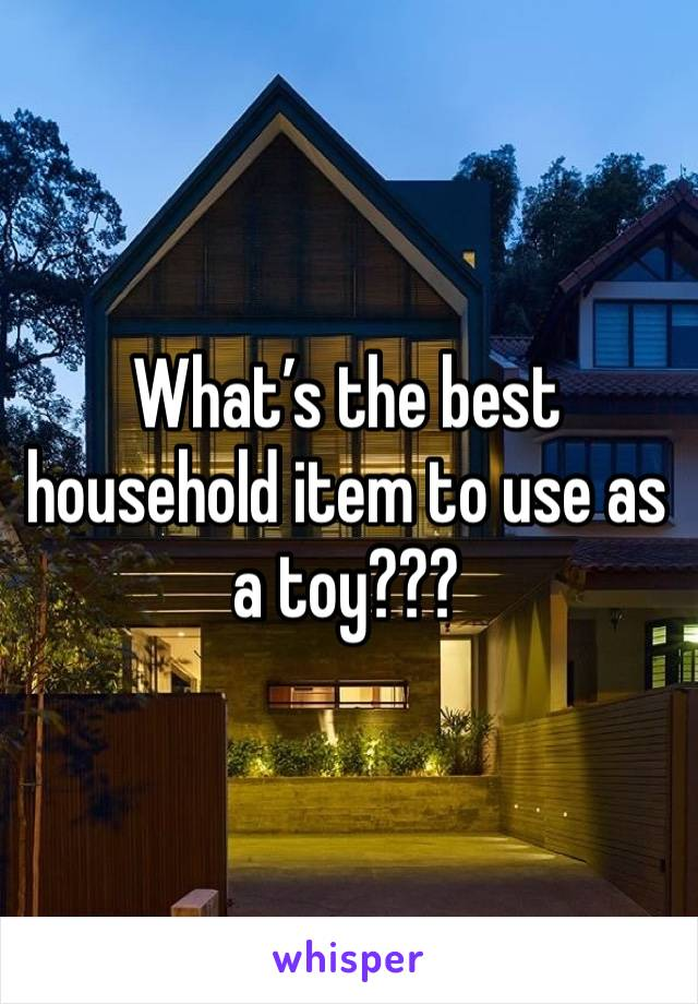 What's the best household item to use as a toy???